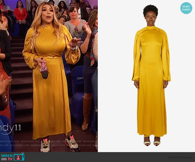 Wrap Sleeve Maxi Dress by Pyer Moss worn by Wendy Williams  on The Wendy Williams Show