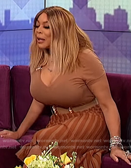 Wendy's brown pleated skirt on The Wendy Williams Show