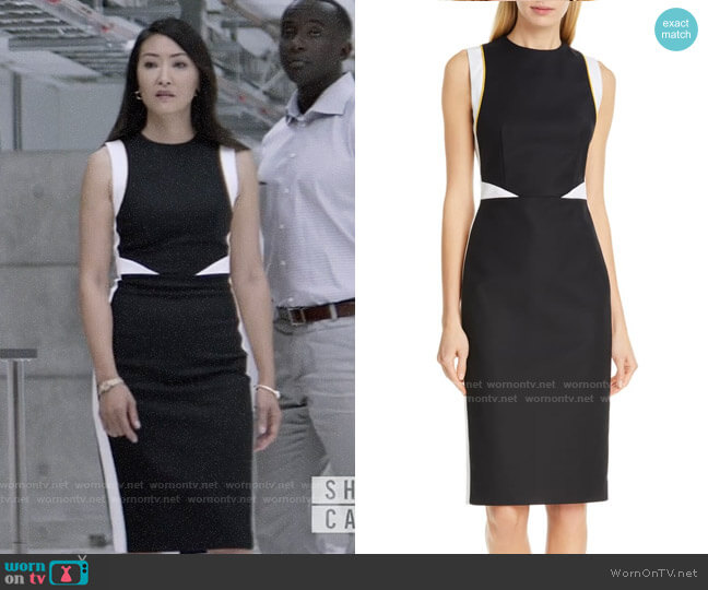 Judith and Charles Tilberg Colorblock Sheath Dress worn by Catherine Hamilton-Kane (Elizabeth Anweis) on Batwoman