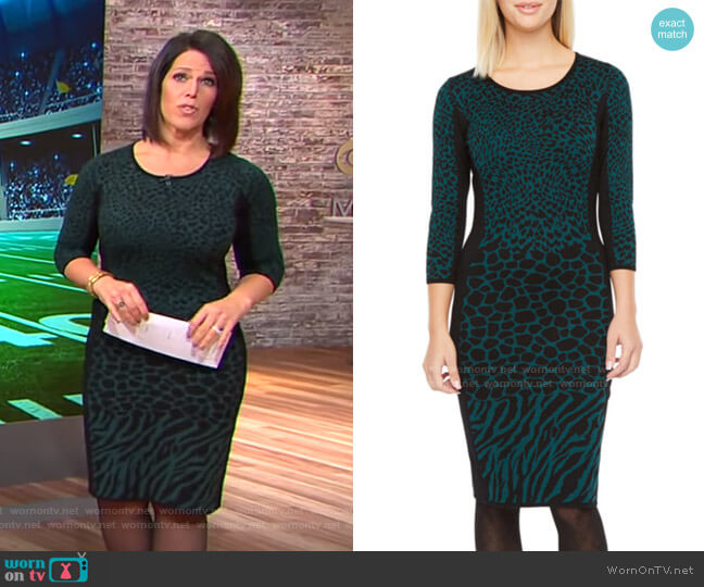 3/4 Sleeve Animal Print Sweater Dress by Danny & Nicole  worn by Dana Jacobson  on CBS This Morning