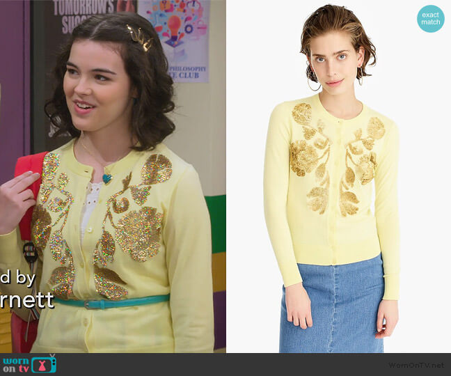 Sequin floral embroidered Jackie cardigan sweater by J. Crew worn by Hannah (Merit Leighton) on Alexa & Katie