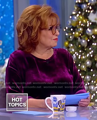 Joy's purple velvet top on The View