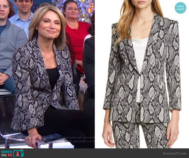 Richie Jacket by Alice + Olivia worn by Amy Robach  on Good Morning America