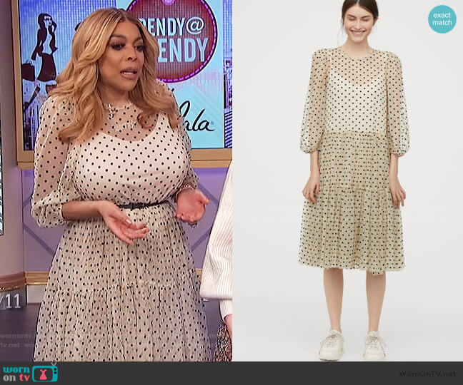 Flock-print Mesh Dress by H&M worn by Wendy Williams  on The Wendy Williams Show