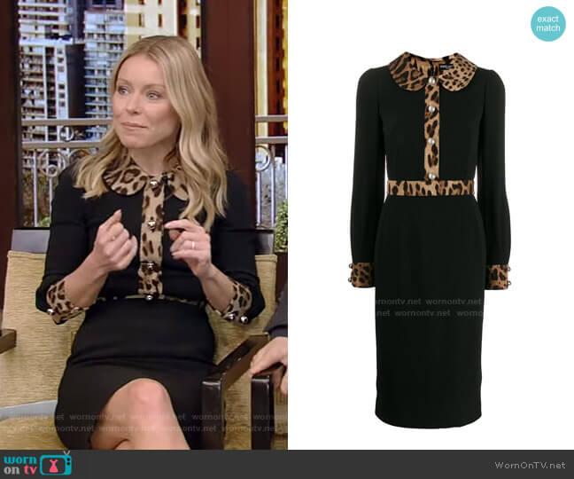 Leopard Trim Long Sleeve Sheath Dress by Dolce & Gabbana worn by Kelly Ripa  on Live with Kelly & Ryan
