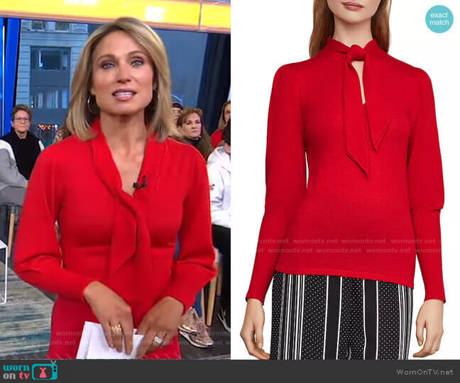 Juliette Sleeve Sweater by BCBGMAXAZRIA worn by Amy Robach  on Good Morning America