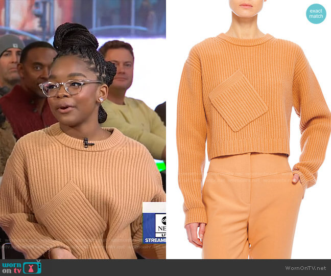 Airy Extrafine Wool Sweater by Tibi worn by Marsai Martin on GMA