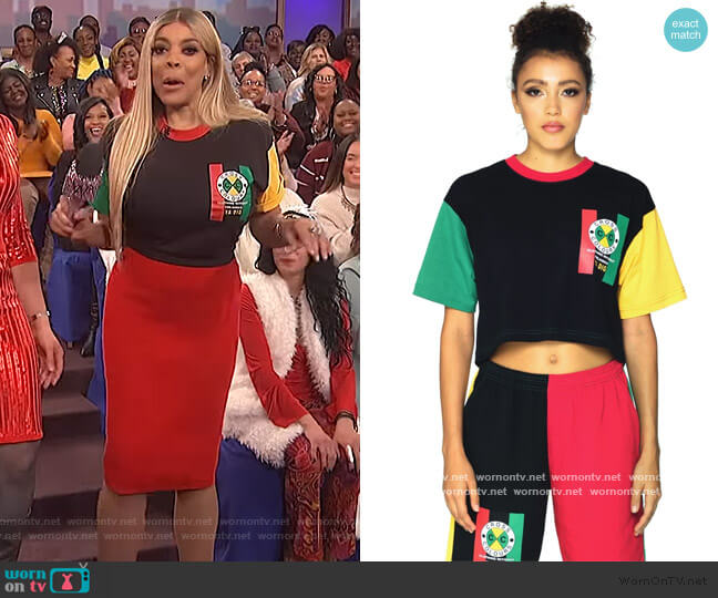 Flag Logo Color Block Crop T-Shirt by Cross Colours worn by Wendy Williams  on The Wendy Williams Show