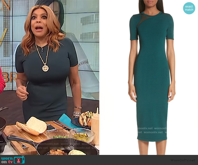 et Ochs Sheer Panel Inset Knit Dress by Cushnie worn by Wendy Williams  on The Wendy Williams Show