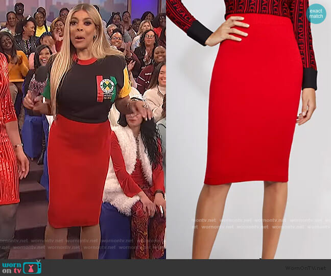 Red Sweater Skirt by Gabrielle Union worn by Wendy Williams  on The Wendy Williams Show