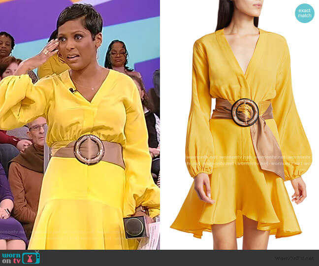 Filis Belted Mini Dress by Silvia Tcherassi worn by Tamron Hall  on Tamron Hall Show