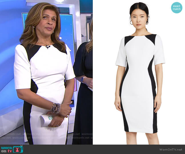 Wolfe Colorblock Sheath Dress by Black Halo worn by Hoda Kotb  on Today