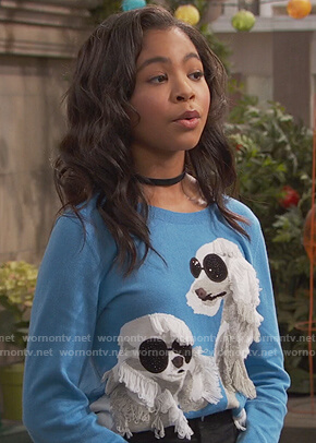 Nia's blue poodle sweater on Ravens Home