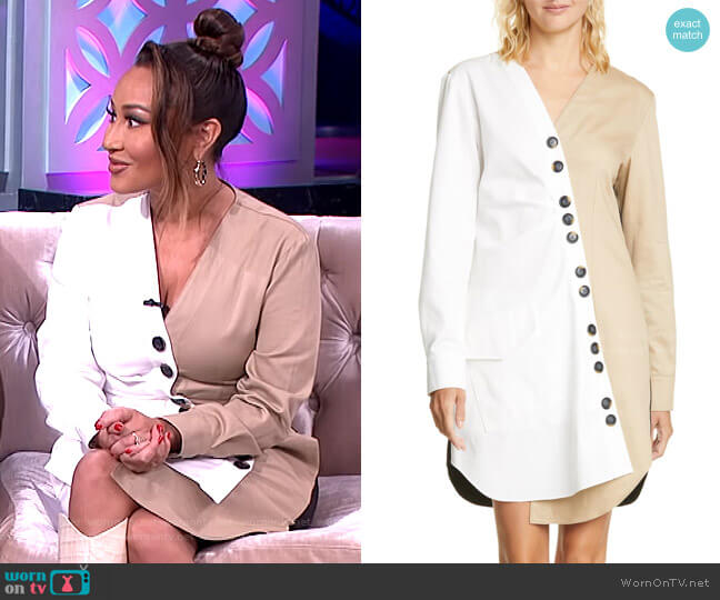 Harrison Asymmetrical Cotton Shirtdress by Tibi worn by Adrienne Houghton  on The Real