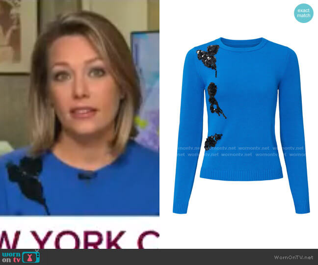 Cerulean Applique Sweater by Prabal Gurung Collective worn by Dylan Dreyer  on Today