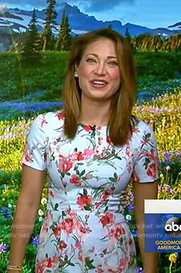 Ginger's blue floral short sleeve dress on Good Morning America