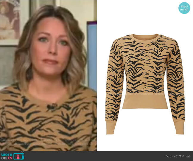 Joy Sweater by Madewell worn by Dylan Dreyer  on Today