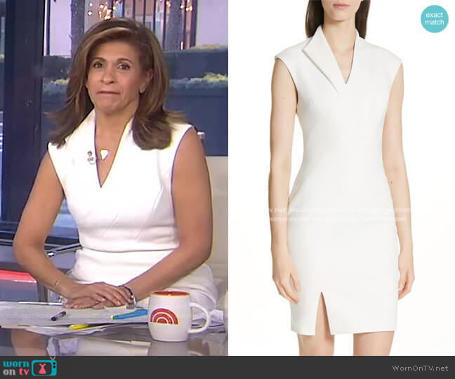 Geodese Dress by Ted Baker worn by Hoda Kotb  on Today