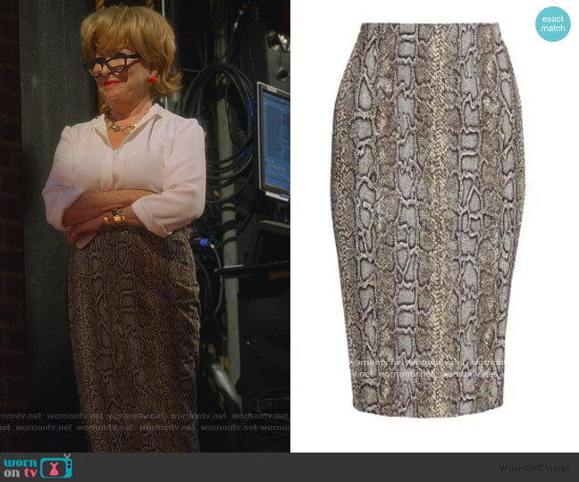 Snake Pencil Skirt by Victoria Beckham worn by Hadassah Gold (Bette Midler) on The Politician