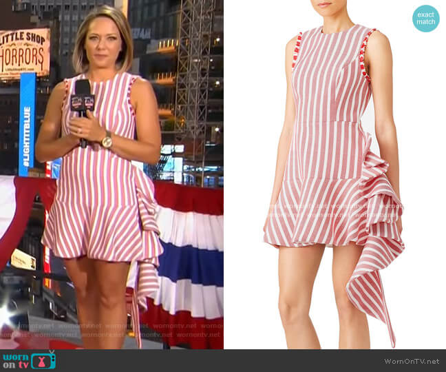 Cara Dress by Alexis worn by Dylan Dreyer  on Today