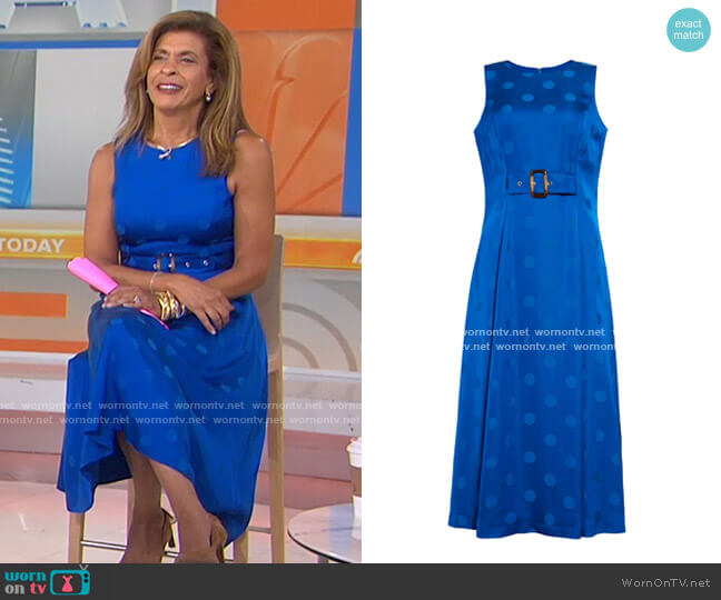 Innabel Belted A-Line Midi Dress by Ted Baker worn by Hoda Kotb  on Today