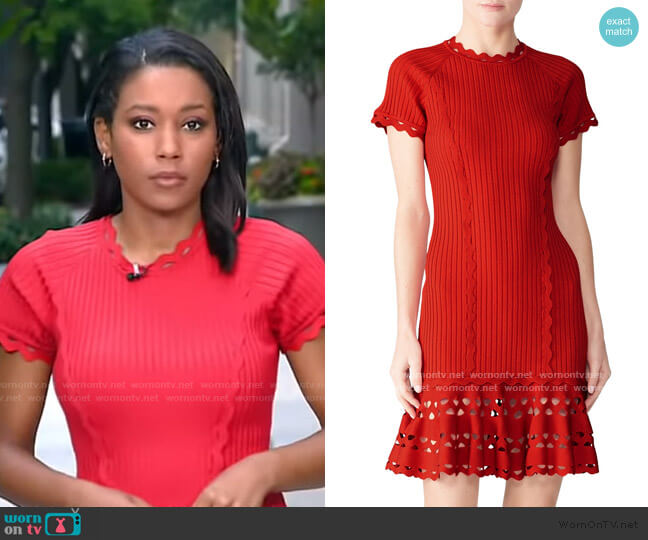 Knit Zig Zag Dress by Jonathan Simkhai worn by Rachel Scott on GMA