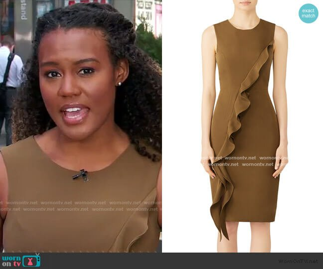 Italian Cady Tilly Dress by Milly worn by Janai Norman  on Good Morning America