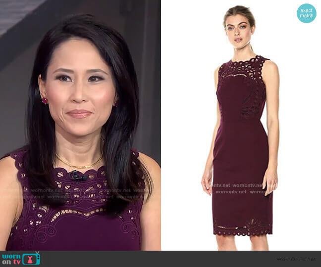 Verita Dress by Ted Baker worn by Vicky Nguyen on Today Show