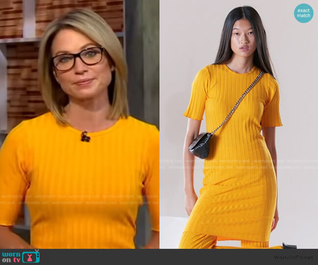 Capo Short Sleeve Rib Dress by Simon Miller worn by Amy Robach  on Good Morning America