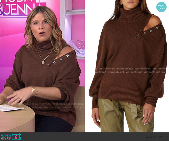 Blake Button Turtleneck Sweater by Marissa Webb worn by Dylan Dreyer  on Today