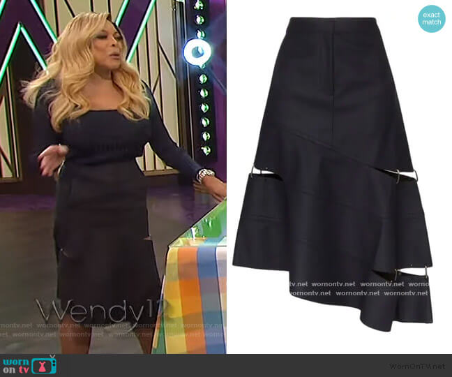 Asymmetric Cutout Ring Detail Skirt by Tibi worn by Wendy Williams  on The Wendy Williams Show