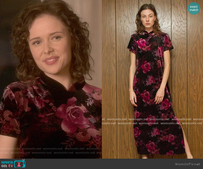 Vintage Rose Print Velvet Dress worn by Jamie (Amelia Eve) on The Haunting of Bly Manor