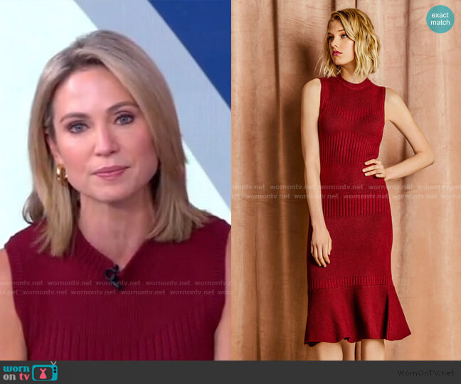 Inez Knit Sweater Dress by Adelyn Rae worn by Amy Robach  on Good Morning America