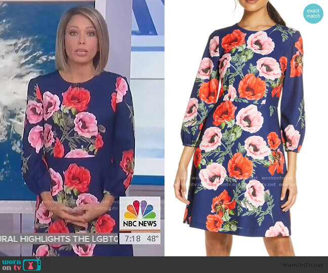 Floral Blouson Sleeve Dress by Eliza J worn by Dylan Dreyer  on Today