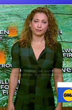 Ginger's green plaid shirtdress on Good Morning America