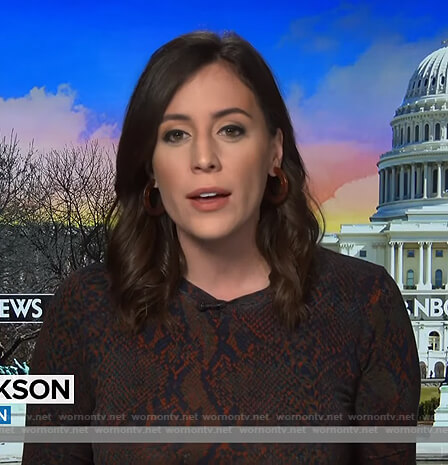Hallie Jackson's snake print dress on Today