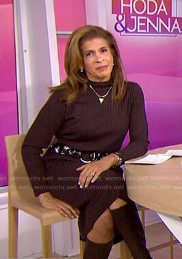 Hoda's brown ribbed knit dress on Today