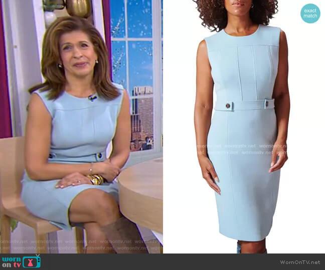 Tabby Sleeveless Sheath Dress by Toccin worn by Hoda Kotb  on Today