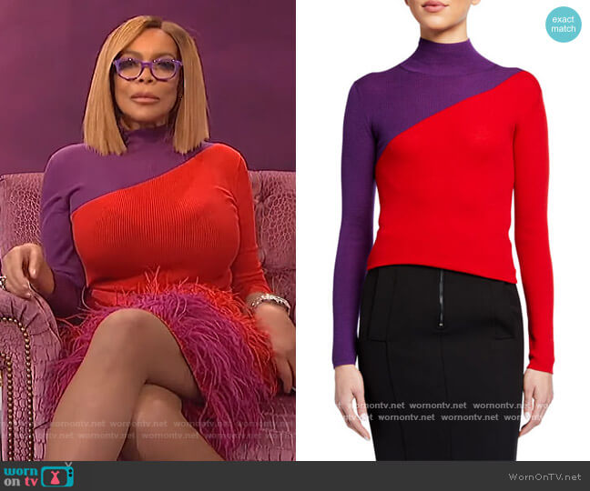Colorblock Rib-Knit Turtleneck Sweater by Emporio Armani worn by Wendy Williams  on The Wendy Williams Show