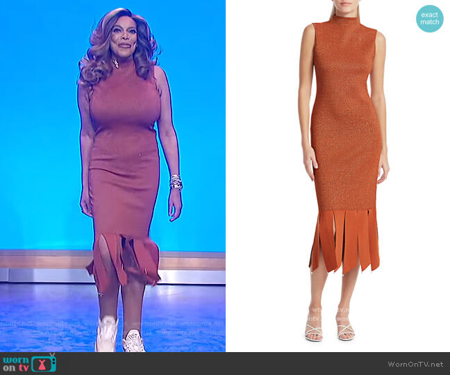 Pat Glitter Sheath Fringe Dress by Staud worn by Wendy Williams  on The Wendy Williams Show