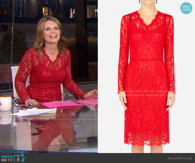 Floral-Lace Knee-Length Dress by Dolce & Gabbana worn by Savannah Guthrie  on Today