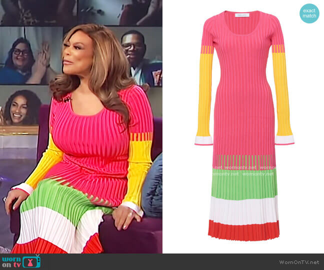 Stripe Ribbed Knit Dress by Prabal Gurung worn by Wendy Williams  on The Wendy Williams Show