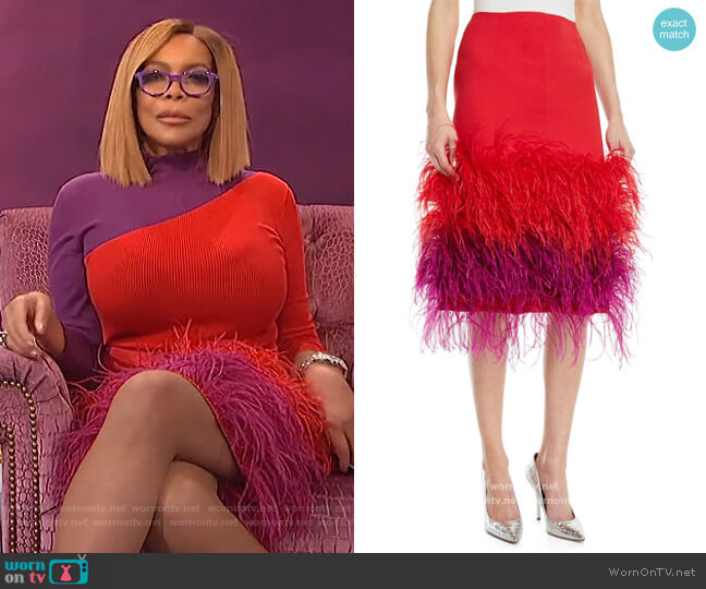 Two-Tone Feather-Hem Silk Cocktail Skirt by Prabal Gurung worn by Wendy Williams  on The Wendy Williams Show