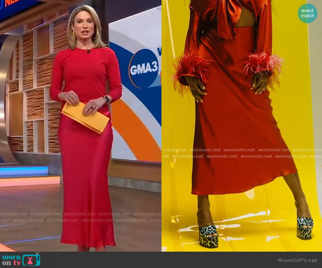 Shimmy Skirt by Rezek Studio worn by Amy Robach  on Good Morning America