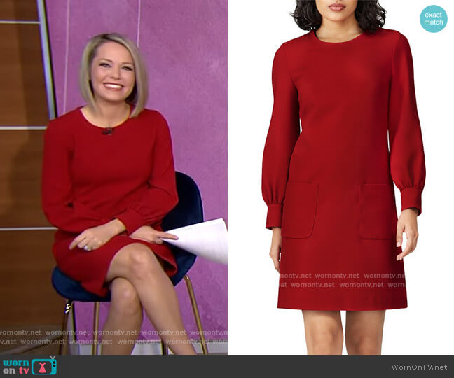 Rose Shift Dress by Tara Jarmon worn by Dylan Dreyer  on Today
