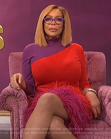 Wendy's red and purple two tone sweater on The Wendy Williams Show