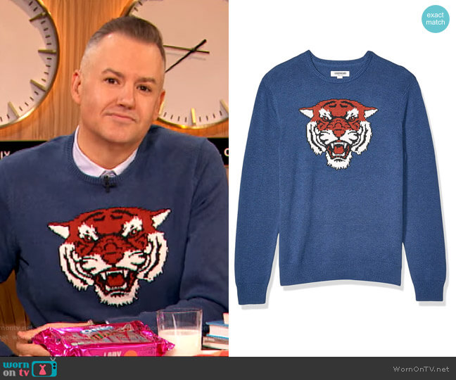 Soft Cotton Crewneck Sweater in Tiger by Goodthreads worn by Drew Barrymore  on The Drew Barrymore Show