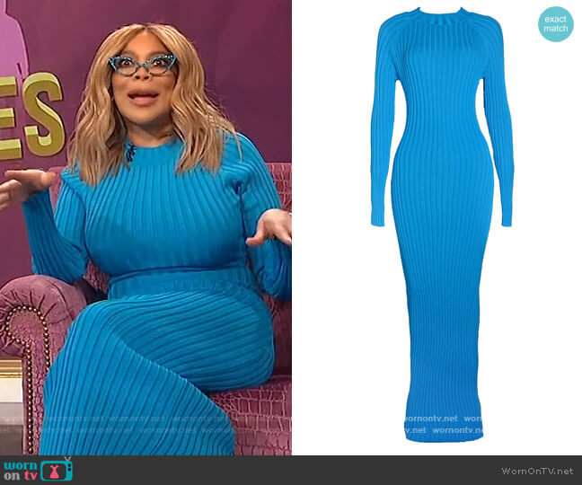 Olivia Maxi Dress by Hanifa worn by Wendy Williams  on The Wendy Williams Show