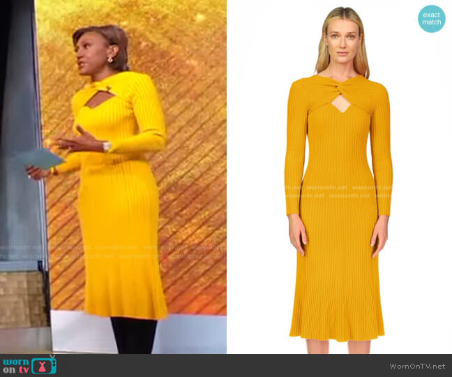 Vivian Dress by Amur worn by Robin Roberts  on Good Morning America