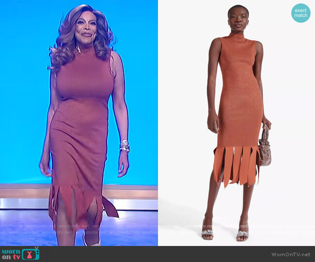 Pat Dress by Staud worn by Wendy Williams  on The Wendy Williams Show